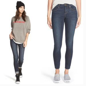 Articles of Society Sarah Stretch Skinny Jeans